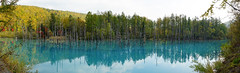 (iloveseven23) Tags:  lake blue      yellow  tree water natural    japan    sapporo