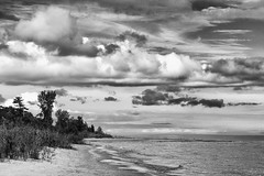 'Distant Prospects' (Canadapt) Tags: lake huron beach tree clouds shoreline waves sky grass horizon bw usa canadapt