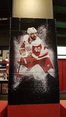 (F.S.F) Tags: henrik zetterberg joe louis arena detroit red wings
