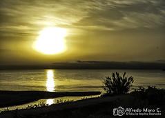Amanecer en la desembocadura del Guadalorce. (Esmerejon) Tags: ladesembocaduradelroguadalorce parquenaturaldeladesembocaduradelroguadalorce atardeceres amaneceres paz tranquilidad paisajes contraluz contraluces