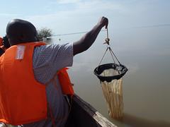KenyaSci2016-P9290106 (jesscorman) Tags: science lakevictoria plankton people