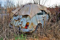 fiat 500 F (riccardo nassisi) Tags: car wreck rust rusty relitto rottame ruggine ruins scrap scrapyard sfascio sfasciacarrozze epave escavatore excavator hydromac abbandonata abbandonato abandoned auto