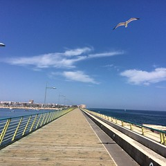 Nice timing by that seagull #sun #spain #seagull #boardwalk #blue (AlanMc69) Tags: bluesky sun boardwalk sea seagull iphone spain instagramapp square squareformat iphoneography