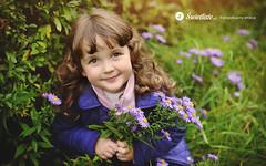 swietliste-fotografujemy-emocje-fotografia-rodzinna-Bydgoszcz-portret-kwiaty-polne