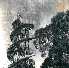 DNA Tower (megalithicmatt) Tags: dnatower perth bw yashica635 kingspark jessopr17 efke mordanage lith dektol