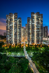 Ghim Moh Valley at Blue Hour (Bryan.Chihan) Tags: bluehour singapore ghim moh sony a7rii sel1635z landscape travel housing highrise heartlands hdb bouna vista sunset apartments park urban architecture building skies
