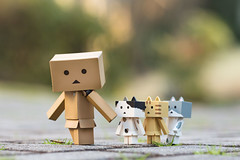Following the leader (Arielle.Nadel) Tags: danbo danboard revoltech toyphotography nyanbo nyanboard cute