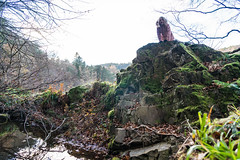 Peebles-16120419 (Our Dream Photography (Personal)) Tags: autumn countryside haylodgepark leelive neidpathcastle ourdreamphotography peebles river rivertweed scottishborders tweeddale walk winter woodland gutterbluid wwwourdreamphotographycom