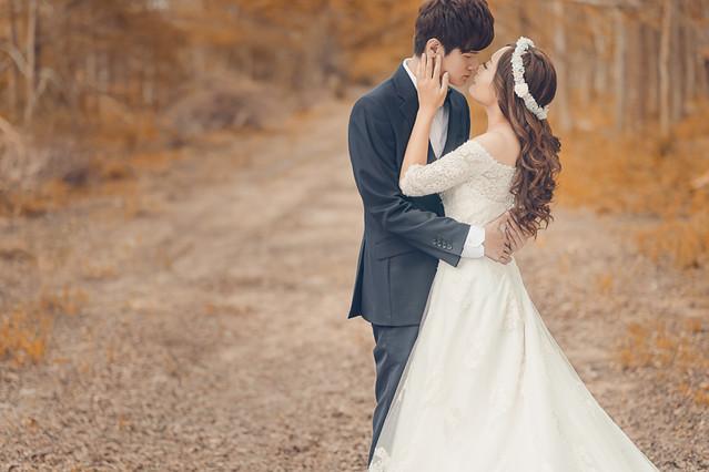 30787952231 be16e05d6c z 台南婚紗景點推薦 森林系仙女的外拍景點