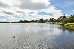 Tjornin Lake (EC@PhotoAlbum) Tags: iceland islanda reykjavik northerneurope tjorninlake lake landscape paesaggio