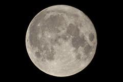 Full Moon (flubatti) Tags: