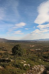 Ebro-Delta_in der_Ferne (Ernst Kuzorra) Tags: calig peniscola spain goat capricorn fire