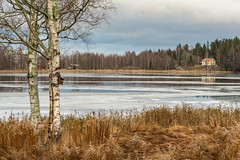 Marnstjrn (Henrik Axelsson) Tags: autumn bergslagen foliage lake landsbygd ludvika marns sj skog trees trd vatten water dalarnasln sverige se