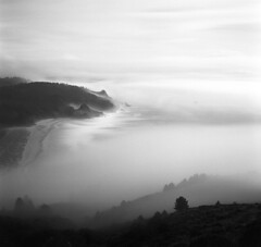 Coast (Zeb Andrews) Tags: hasselblad film blackwhite monochrome oregoncoast landscape pacificnorthwest mediumformat 6x6 fog pacificocean