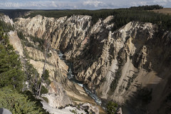 "Grand Canyon of the Yellowstone • <a style=""font-size:0.8em;"" href=""http://www.flickr.com/photos/63501323@N07/31193422415/"" target=""_blank"">View on Flickr</a>"