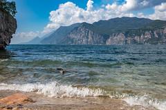 _DSC7374 (Alessandro Dal Gesso) Tags: 2016 veneto anni lagodigarda luoghi paesaggionaturastill malcesine italia it