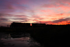 To Catch A Beaver (sdl39hogger) Tags: cp canadianpacific watertownsub morningsun goldenhour ge generalelectriclocomotives watertown wisconsin dirtyburntbeaver
