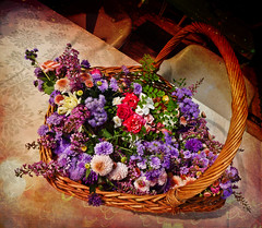 Posies from Irene's Garden (missnoma) Tags: flowers basket australia textures nsw hay posies onthetable manycolours basketofflowers irenesgarden mamasbloomers