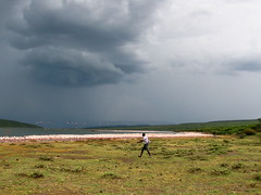 Lake Bogoria, Pink Flamingos, an upcoming storm and a fellow tourist from Nairobi (Felix Krohn) Tags: voyage africa travel lake vacances holidays kenya urlaub afrika kenia 2012 afrique bogoria lakebogoria 2013 img91431