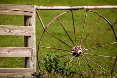 Wagon Wheel Fence (Mabry Campbell) Tags: old usa green field metal rural fence photography countryside us photo rust texas unitedstates unitedstatesofamerica country rusty photograph 100 february campbell wagonwheel 2012 f40 mabry 200mm texashillcountry ef200mmf28liiusm canonef200mmf28liiusm sec mabrycampbell february192012 mabrycampbellcom 201202191707