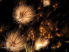 Kate's Birthday Fireworks 8 (gam_photoduffer) Tags: ontario london flickr fireworks olympus zuiko e5 iamcanadian 2013 omot cans2s flickrgolfclub thingsinmotion clanflickr photographybay 50200mm28