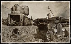 Junkyard Rods (2013) (kenmojr) Tags: auto abandoned car rural junk garage hotrod vehicle junkyard scrapyard scrap derelict