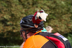 Cyclist with a panda on his helmet, Prudential Ride London 100 2013 (www.kevinoakhill.com) Tags: bear city people london classic hat bike bicycle race canon toy eos cycling stuffed panda kevin ride expo oakhill weekend capital helmet 4th grand august racing prix cycle 7d third 100 fourth prudential 3rd 2013 ridelondon kevinoakhill prudentialridelondon