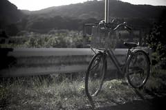 ママチャリ (mijabi) Tags: summer japan canon 50mm f18 夏 kanagawa s21 6d angenieux 神奈川 アンジェニュー 八菅山