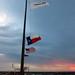 Aggie flags