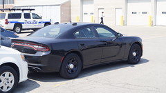 Peel Regional Police NEW 2015 Dodge Charger Unmarked (NBKPhotography) Tags: new bus ford port sedan truck lights explorer police utility victoria ambulance scorpion credit stealth dodge service vic crown blade van peel mississauga taurus region signal federal siren regional charger undercover tomar rls interceptor unmarked whelen 2015 lightbar servies code3 fpi slicktop cvpi code3pse fpiu bramptopn