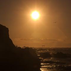 セキケイ 1 (w_quarter_pounder) Tags: sunset sea hayama 葉山 fa50mmf14 pentaxart