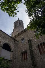 A l'ombre des arbres (Fanch-Armor) Tags: cathédrale espagne barcelone catalogne 2015