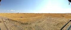 Masai Mara Landscape (jhderojas) Tags: masai mara landscape kenia