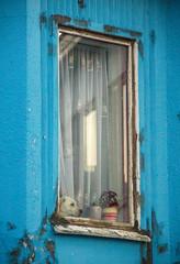 Labrador dog looking out the window (thorrisig) Tags: 06082016 dalvk gluggi gluggar hundur nrmynd spendr iceland sland island thorrisig thorfinnursigurgeirsson thorri orrisig thorfinnur orfinnur orri orfinnursigurgeirsson sigurgeirsson sigurgeirssonorfinnur dorres northoficeland norurland trllaskagi dalvk dalvik mammals dog dogs labradordog window blue closeup