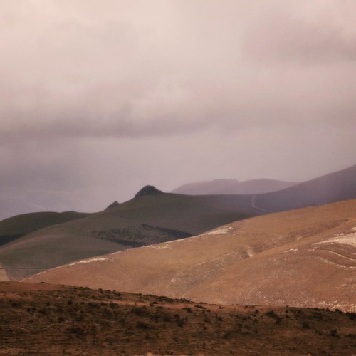 Sur les pentes du Chimborazo.
