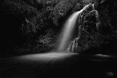 Darkness falls (Steve Clasper) Tags: hindhopelinn kielderforestdrive northumberland landscape steveclasper longexposure