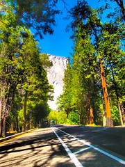 Road to El Capitan (Lost in Flickrama) Tags: yosemite nationalpark california rocks mountains road lake majestic scenery sky trees green elcapitan