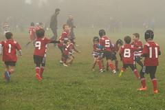 DSCF7247 (Minirugby AS Rugby Milano) Tags: 31102016 u7 cusago
