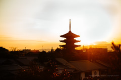 Sunset, Tō-ji temple, Kyoto (jev) Tags: leicam9 noctiluxm50mmf095asph kyoto noctilux amazing arountheworld artq getaway igtravel ilovetravel instatravel japan landscape leica leicaimages nocti pagoda postcardsfromtheworld scenery sunset temple toji travel travelgram traveltheworld trip view 京都市 東寺