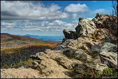 Hawksbill Mountain - Shenandoah National Park, VA (Nikographer [Jon]) Tags: snp shenandoahnationalpark va fall foliage 20161022d4231368 nikon d4 nikond4 oct october colors rocks hike