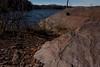 Plant Fossil, Jurassic Turners Falls Formation (koperajoe) Tags: mudstone geology river water bartonscove turnersfalls redbed paleontology westernmassachusetts fossils tfma