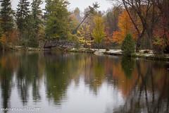 First Snow (maureen.elliott) Tags: snow landscape park trees fall autumn owensound bridge