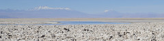 Laguna Chaxa (monto84) Tags: amrica amricadelsur chile desiertodeatacama formato formato4x1 fotografapaisaje regindeantofagasta reservanacionallosflamencos salardeatacama