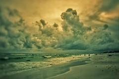 Golden Light (scottwills) Tags: scott wills scottwills beach ocean golden gold sky skyline horizon sunset light landscape water waves