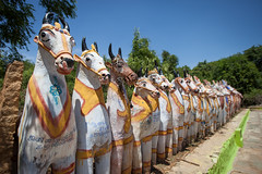 Horse statues offered from devotes only in Hindu Chettinad temples (Scalino) Tags: chettinad india inde trip travel tamilnadu south horse statues temple offerings hindu