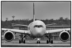 A 3 5 0 (Mav'31) Tags: 120400mm airline airliners airplane airport aroport blagnac d7200 jromevinonneau lfbo mav31 nikon plane sigma spotter spotting tls toulouse aircraft avgeek avion aviondeligne aronef extrieur