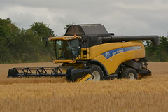 New Holland CX8070 Combine Harvester cutting Winter Barley (Shane Casey CK25) Tags: new holland cx8070 combine harvester cutting winter barley cx 8070 yellow cnh nh castletownroche newholland grain harvest grain2016 grain16 harvest2016 harvest16 corn2016 corn crop tillage crops cereal cereals golden straw dust chaff county cork ireland irish farm farmer farming agri agriculture contractor field ground soil earth work working horse power horsepower hp pull pulling cut knife blade blades machine machinery collect collecting mhdrescher cosechadora moissonneusebatteuse kombajny zboowe kombajn maaidorser mietitrebbia nikon d7100
