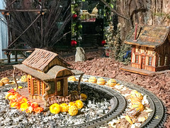 HTS-32 (Peter Parides) Tags: unitedstates newyork christmas trains newyorkbotanicalgardens new york city
