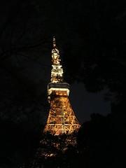 IMG_6917 (digitalbear) Tags: ichiran ramen nakano tokyo japan tonkotsu tokyotower