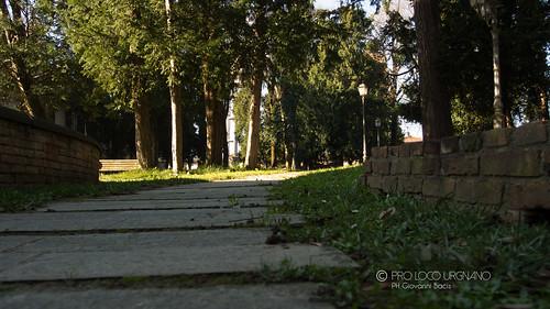 Rocca Albani - Parco